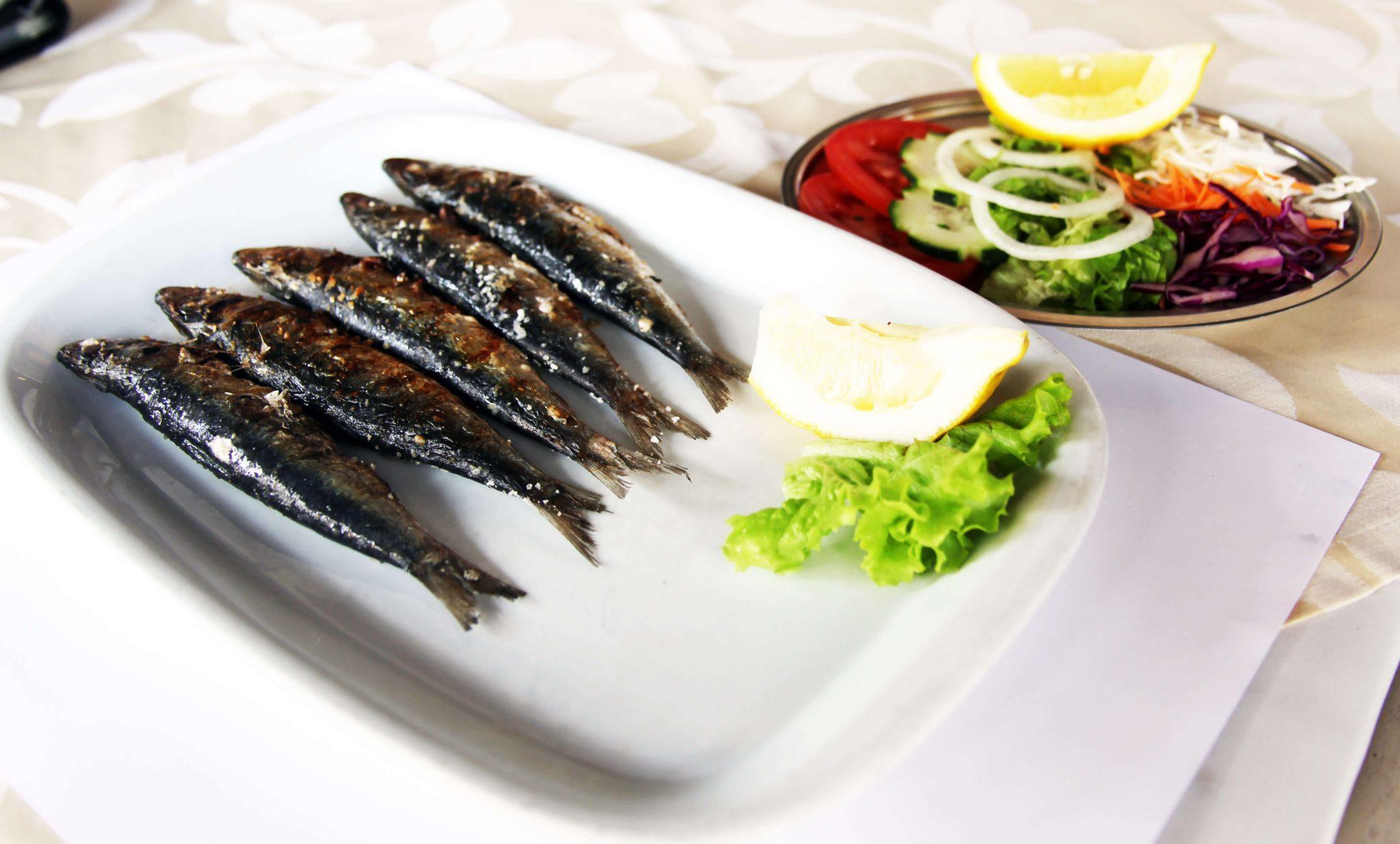 fish-exemplo